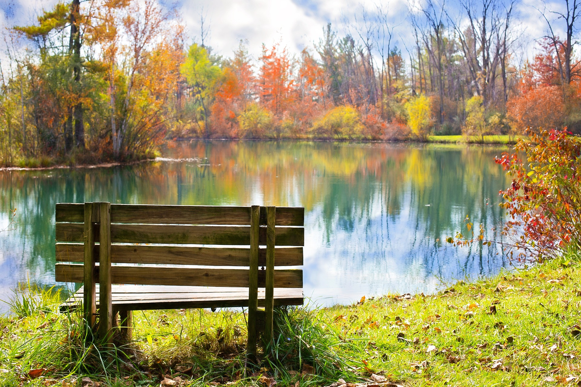 Image of a wood bench next to a lake